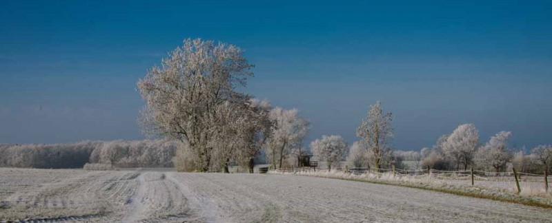 Wintertag-3906